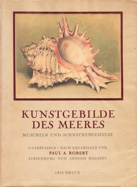 Kunstgebilde des Meeres. Muscheln und Schneckengehäuse