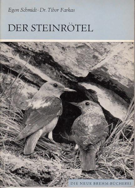 Die Steinrötel. Monticola saxatilis