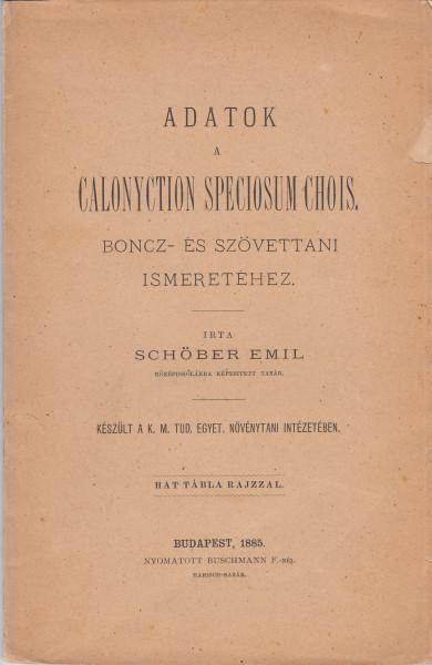 Adatok a Calonyction speciosum Chois. boncz- és szövettani ismeretéhez