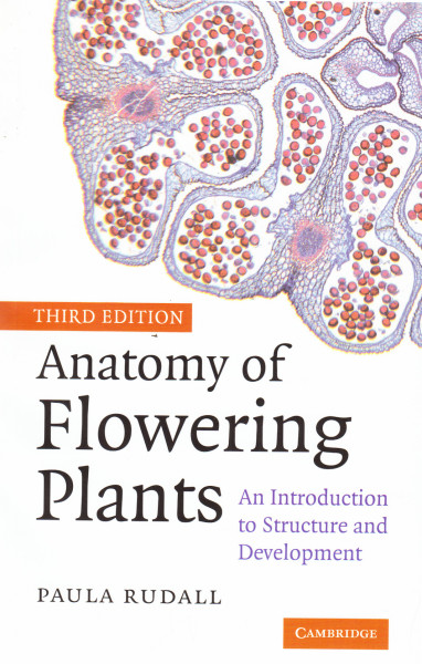 Anatomy of Flowering Plants. An Introduction to Structure and Development