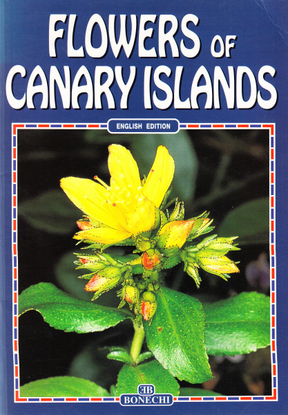 Flowers of Canary Islands
