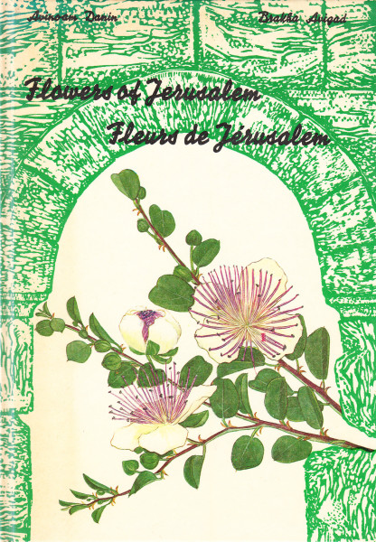 Flowers of Jerusalem - Fleurs de Jérusalem