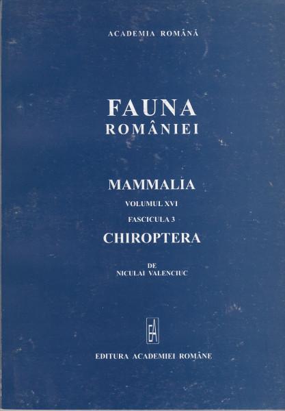 Chiroptera. Mammalia