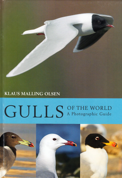 Gulls of the World. A Photographic Guide