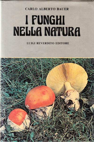 I funghi nella natura