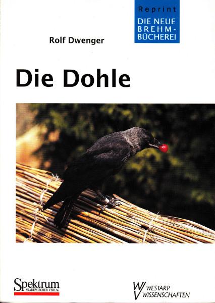 Die Dohle. Corvus monedula