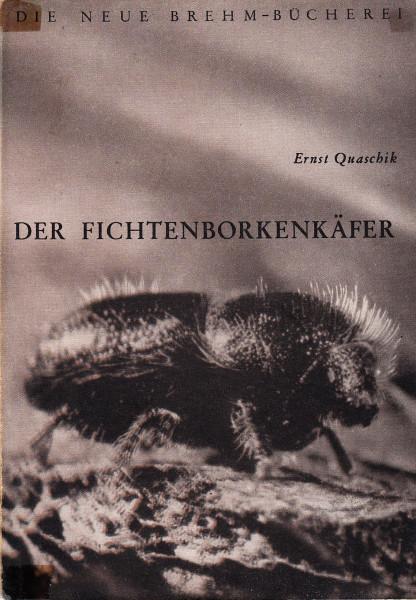 Der Fichtenborkenkäfer (Ips typographus L.)