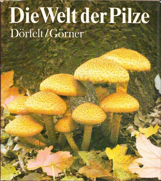 Die Welt der Pilze